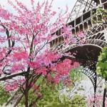 Hidden Eiffel