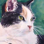 Rosie, my cat, cat painting, watercolor cat, watercolor painting, pet paintings
