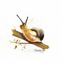 snail, snail painting, critter, critter painting, watercolor snail, watercolour snail, watercolour snail painting, golden snail,