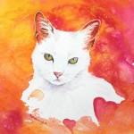 Cat of Hearts