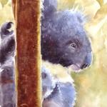 daydreaming, koala, koala painting, koala watercolor painting