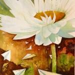 everlasting, everlasting attraction, paper daisy, daisy, paper planes, paper, everlasting, everlasting flower, everlasting daisy