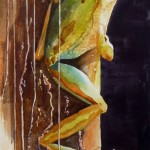 frog watercolor painting, frog painting, watercolour painting