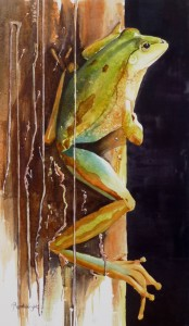 frog watercolor painting, frog painting, watercolour painting, australian artist, artist, renata wright