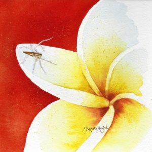 lynx spider, spider painting, spider art, lynx spider painting, lynx spider watercolour, lynx spider watercolor, watercolor spider