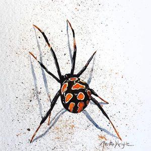 spider, spider art, spider painting, red widow spider, red widow, red and black spider, spider art, watercolor spider